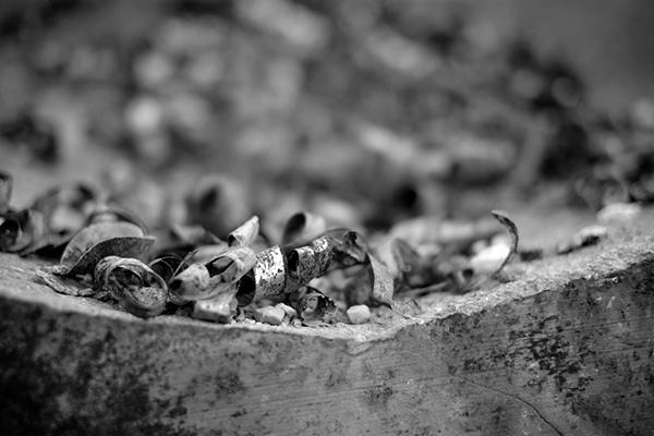 ضایعات و قراضه آهن | مبین فولاد آسیا 1